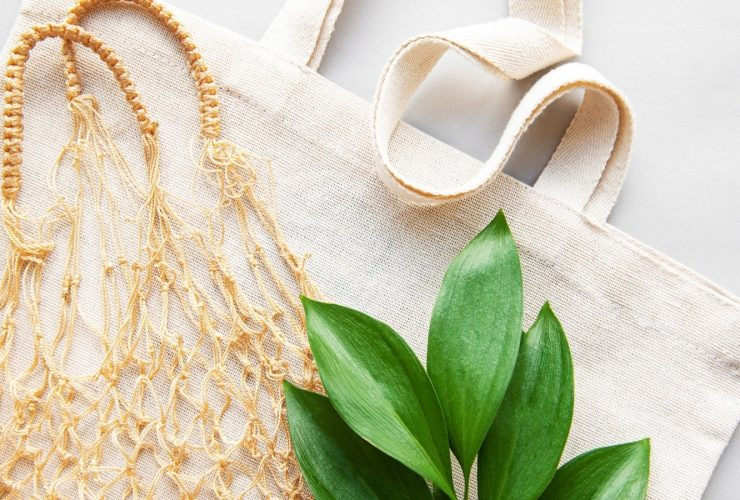 Céline Gainsburg-Rey - Launching a sustainable brand